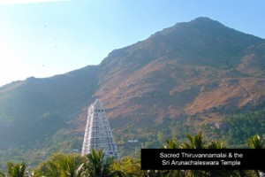 thiruvannamalai_temple_mountain